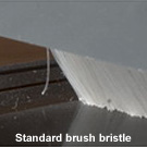 Standard brush bristle